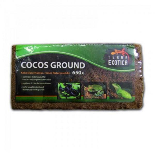 Terra Exotica Cocos Ground ca. 650 g - fein