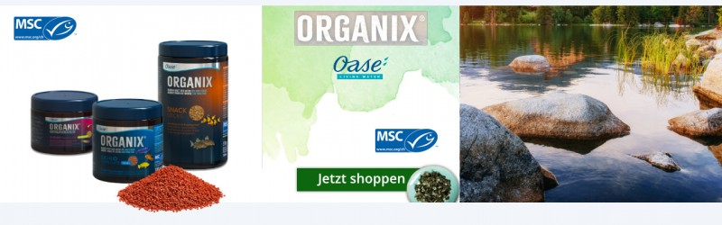Oase Organix Fischfutter