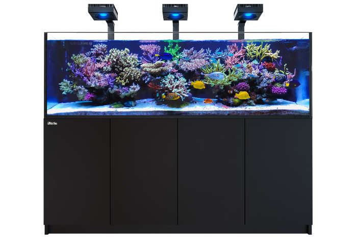 Bild zeigt die Montagehalterung auf einen Red Sea Reefer Aquarium