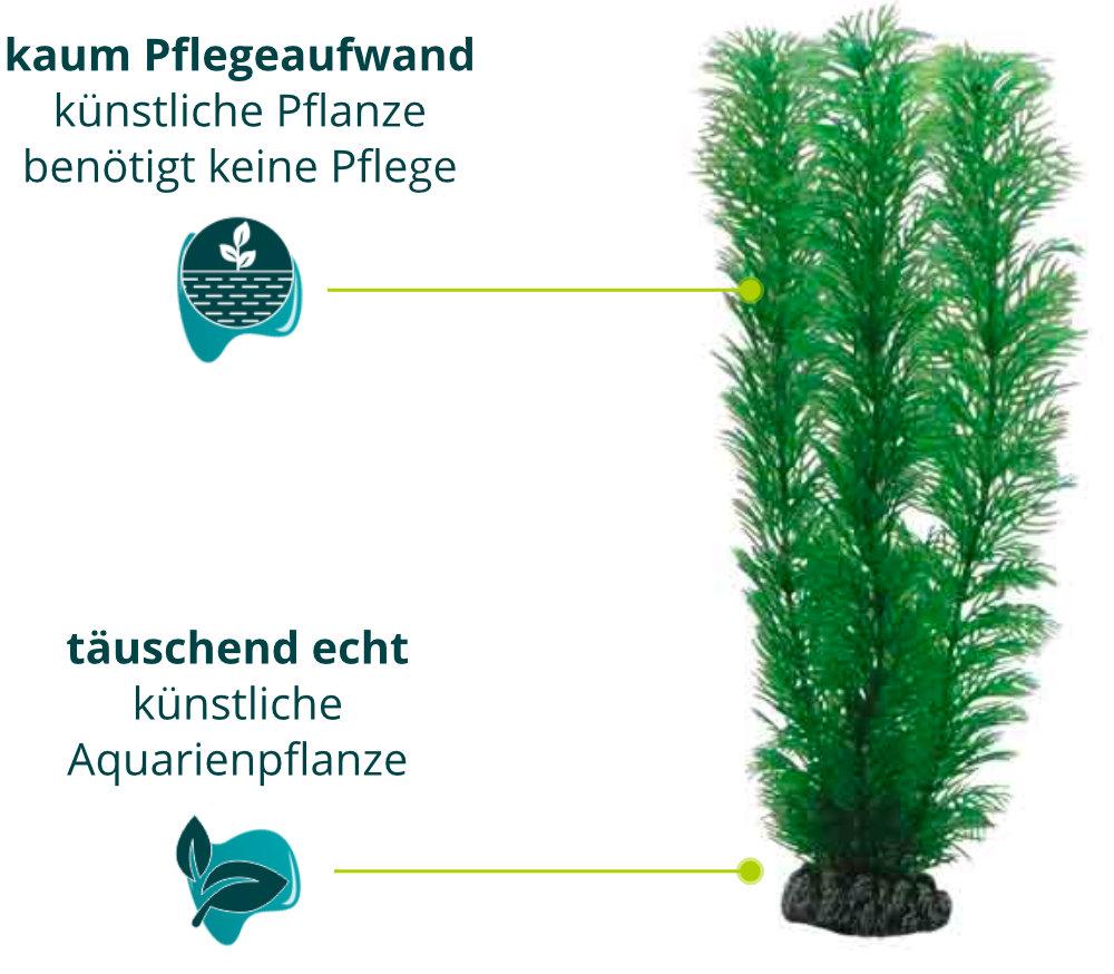 Dieses Bild zeigt die Hobby Hobby Egeria - Aquarium Kunstpflanze