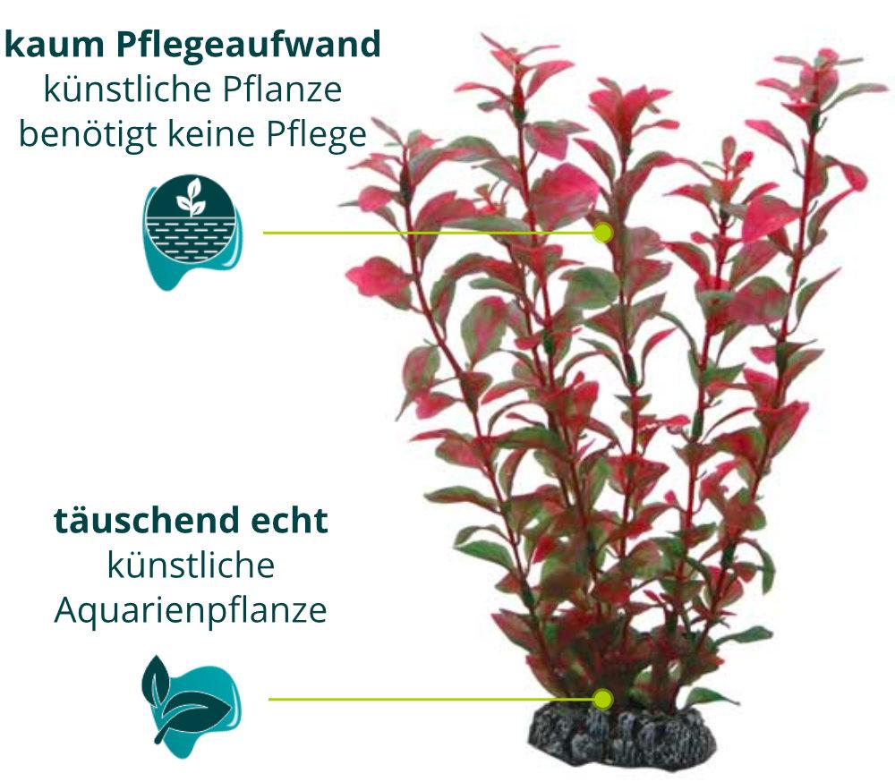 Dieses Bild zeigt die Hobby Ludwigia - Aquarium Kunstpflanze