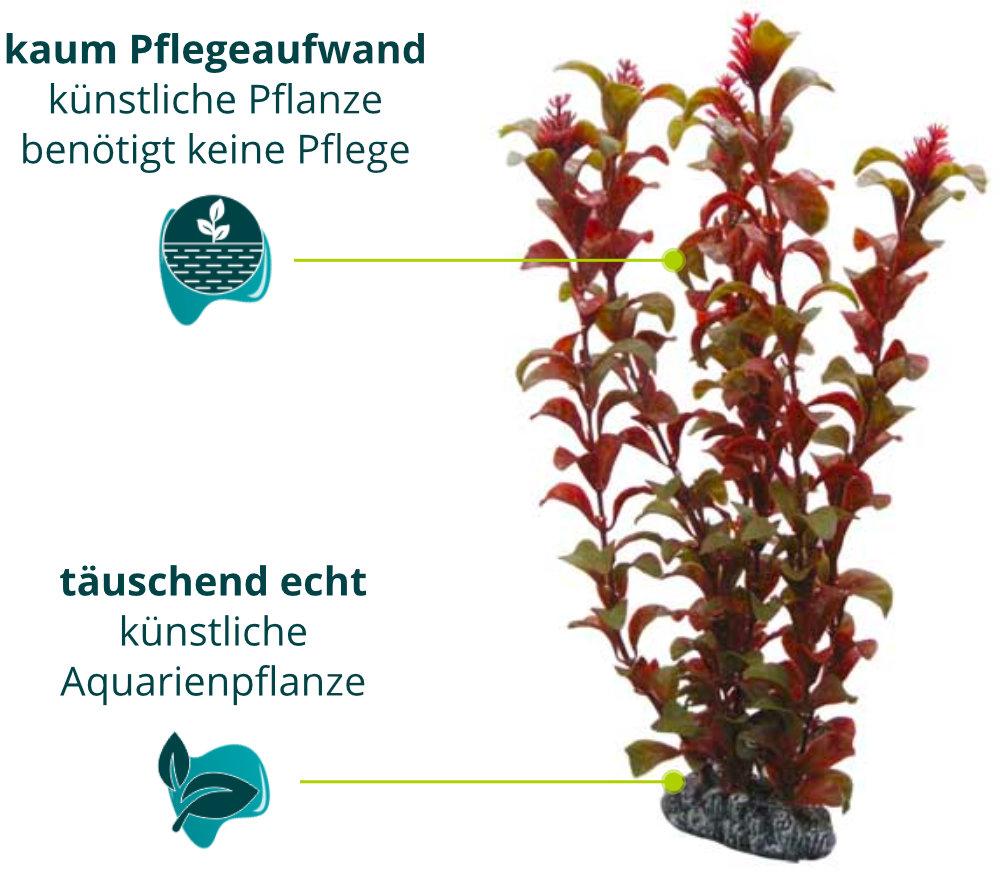 Dieses Bild zeigt die Hobby Rotala - Aquarium Kunstpflanze