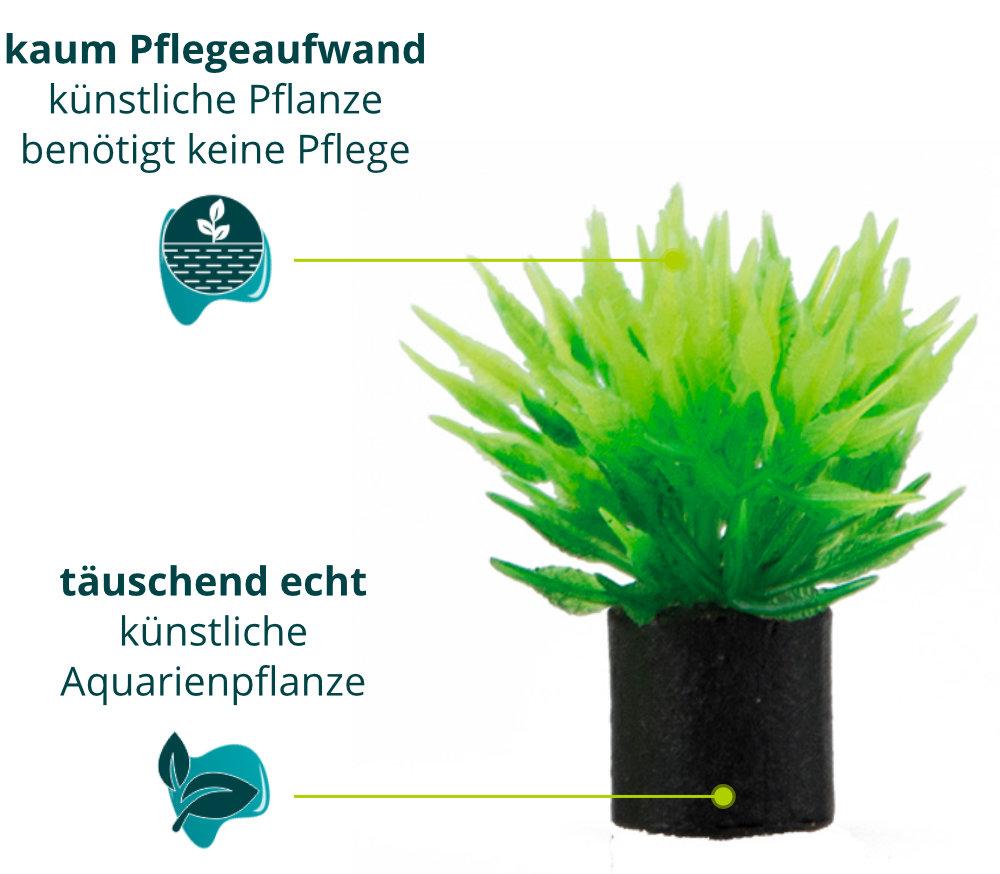 Dieses Bild zeigt die Hobby Utricularia mini - Aquarium Kunstpflanze