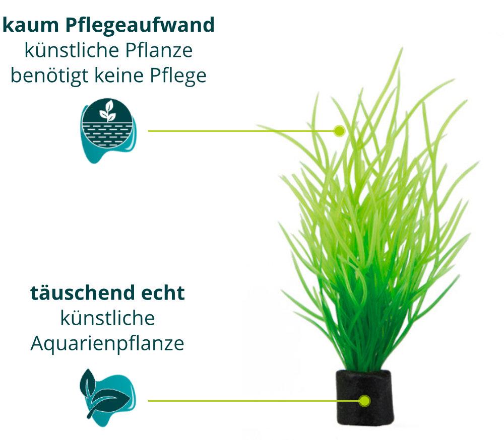 Dieses Bild zeigt die Hobby Lilaeopsis mini - Aquarium Kunstpflanze