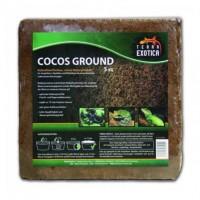Terra Exotica Cocos Ground ca. 5 kg - fein