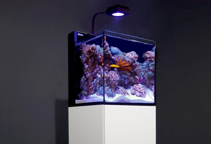 Meerwasseraquarium Red Sea Max Nano