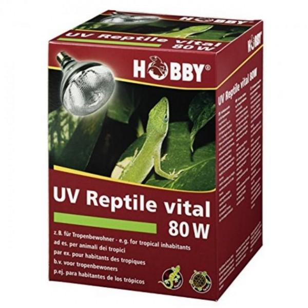 Hobby UV Eco vital 80 W