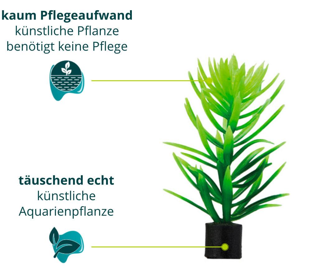 Dieses Bild zeigt die Hobby Didiplis mini - Aquarium Kunstpflanze